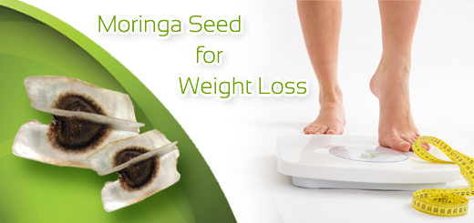 moringa oleifera seeds for weight loss