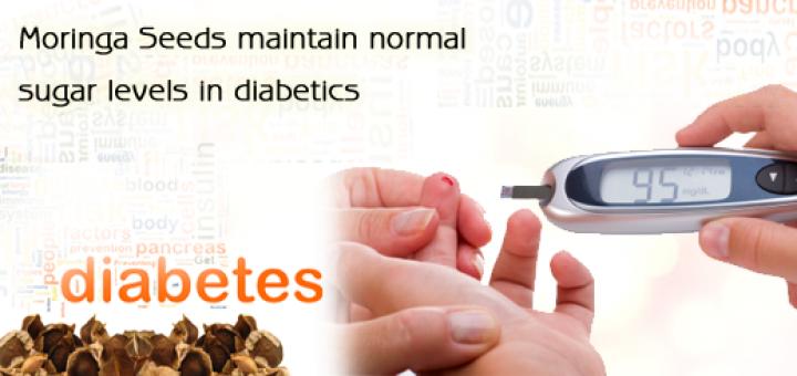 moringa seeds for diabetes